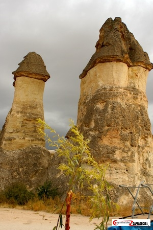 Pasabag- must-visit sites in Cappadocia
