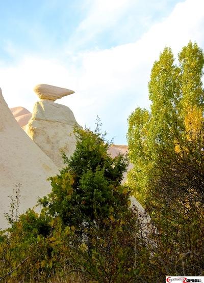 Zemi Valley Pointer Cappadocia