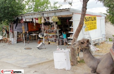 Urgup camels in Cappadocia shop